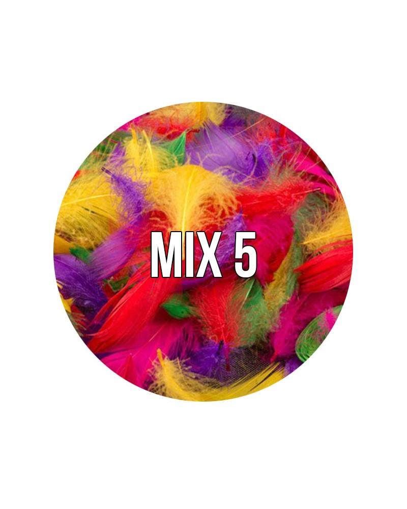 Piórka dekoracyjne w torebce MIX 5