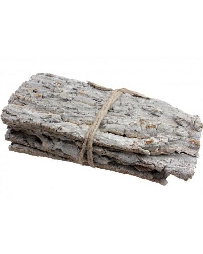 Kora drzewna arkusze białe