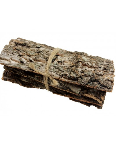 Kora drzewna arkusze naturalne