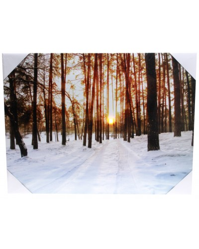 Obraz LED zachód słońca