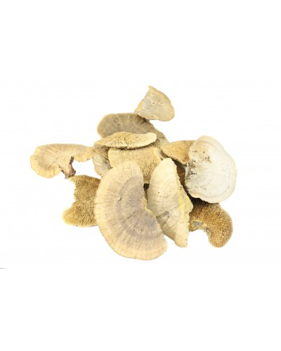 Grzyby suszone 8-10cm naturalne 100g