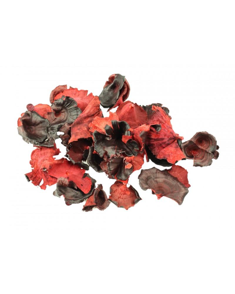 Grzyby suszone 50g czerwone, malowane