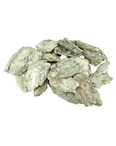Kora sosny bielona, dekoracyjna 1kg