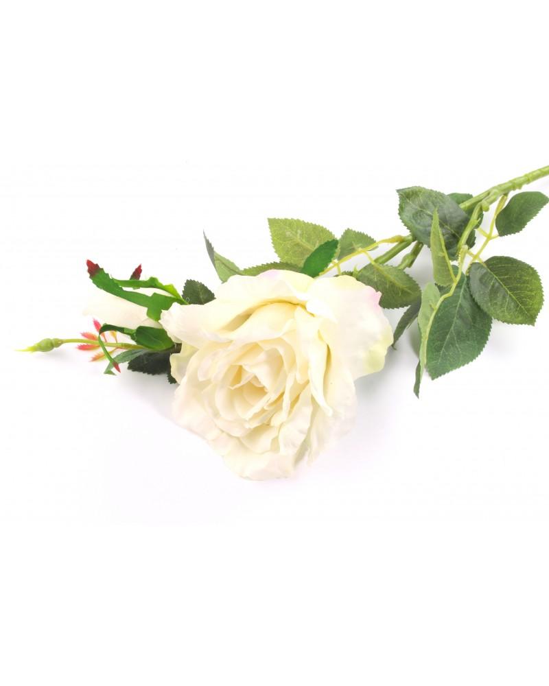 Róża długa kremowa 80cm