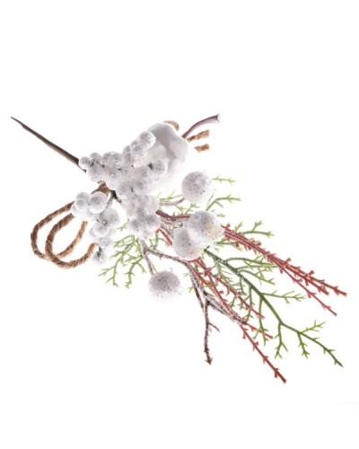Głóg Biały Gałązka Zimowa 26 x 12cm